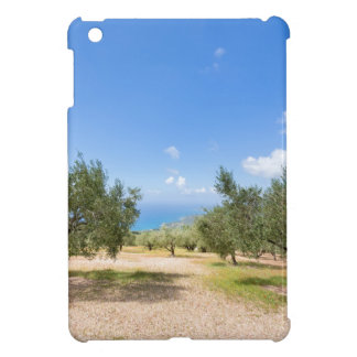 Orchard with olive trees at sea in  Greece iPad Mini Case