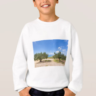 Orchard with olive trees at sea in  Greece Sweatshirt