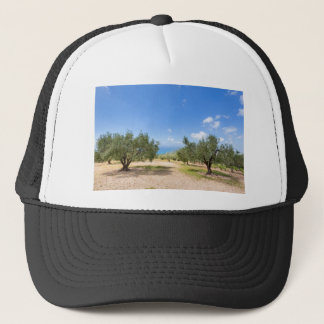 Orchard with olive trees at sea in  Greece Trucker Hat