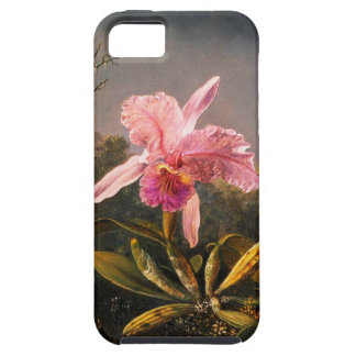Orchid and Three Brazilian Hummingbirds iPhone 5 Cases