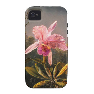 Orchid and Three Brazilian Hummingbirds Case-Mate iPhone 4 Covers