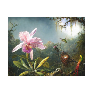 Orchid and Three Hummingbirds Fine Art Canvas Print