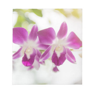 Orchid Blossom Notepad