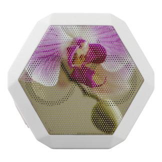 Orchid White Boombot Rex Bluetooth Speaker