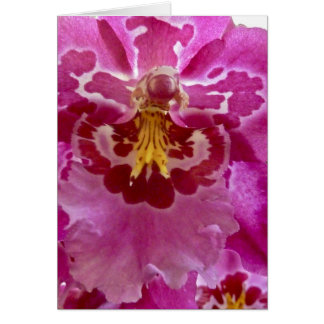 Orchid Close Up Card