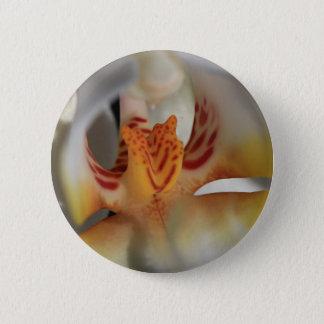 Orchid Closeup 6 Cm Round Badge