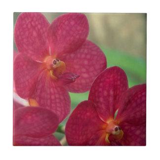 Orchid Faces Tiles