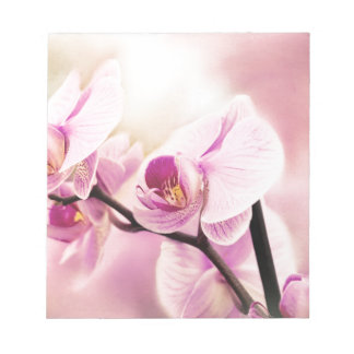 orchid in bloom notepad