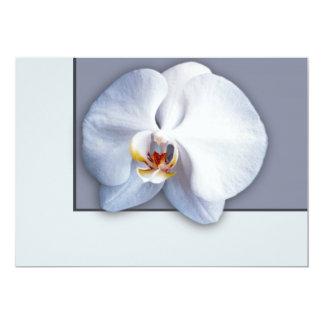 "Orchid 5"" X 7"" Invitation Card"