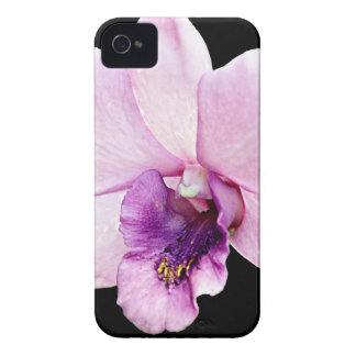 Orchid iPhone 4 Cover