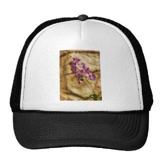 Orchid - Just Splendid Trucker Hats