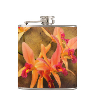 Orchid - Laelia - It's showtime Hip Flask