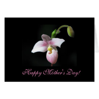 Orchid Mother's Day Greeting Card