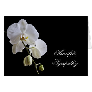 Orchid on Black Sympathy Card