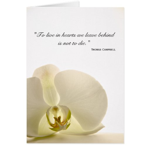 Orchid on White Sympathy Thank You Note Card