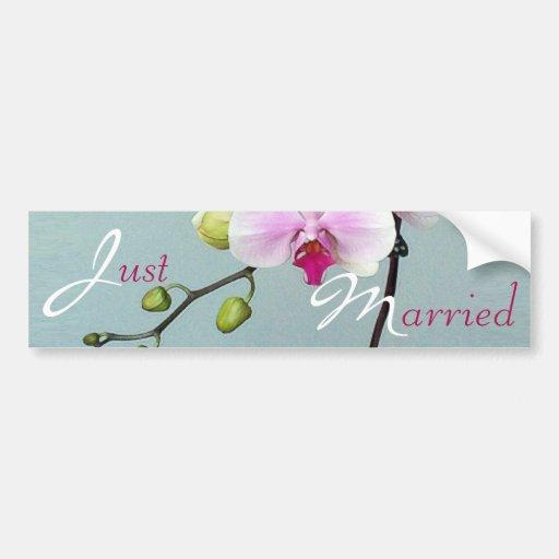 Orchid Orji Just Married Bumper Sticker