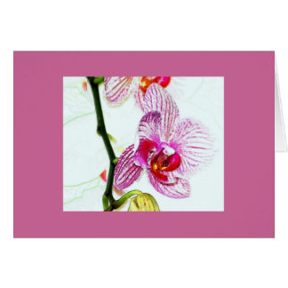 Orchid Painting Greeting Card