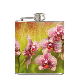 Orchid - Phalaenopsis - Simply a delight Hip Flask