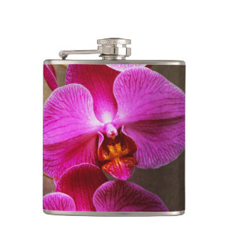 Orchid - Phalaenopsis - The moth orchid Hip Flask