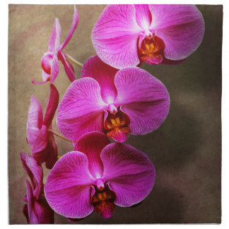 Orchid - Phalaenopsis - The moth orchid Napkin