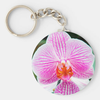 Orchid Pink Asian Flower Floral Basic Round Button Key Ring