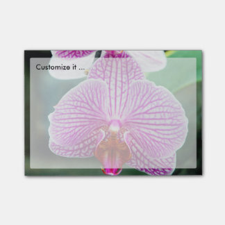 Orchid Pink Asian Flower Post-it Notes