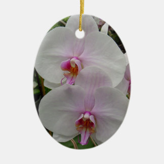 Orchid - Pink Blossom (Colossians 2:3) Christmas Tree Ornament