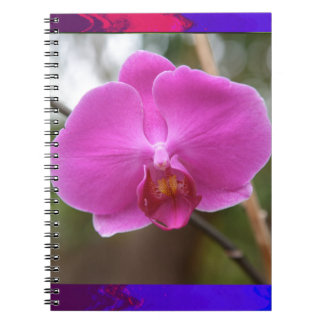 ORCHID pink Pearl Flower Love Romance Expression Spiral Notebook