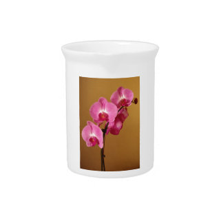 orchid pitcher