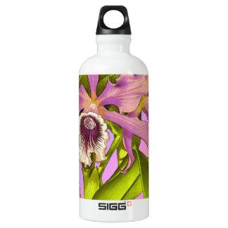 Orchid Pop Water Bottle