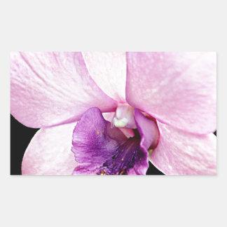Orchid Rectangular Sticker