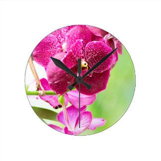 orchid round clock