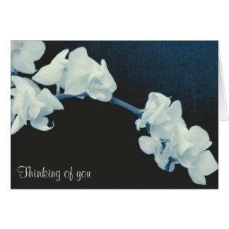 Orchid Sympathy Card