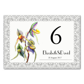 Orchid - The Paphiopedilum Card