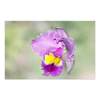 Orchid touched by God for Mom Stationery Paper
