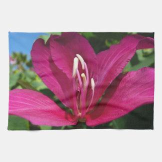 Orchid Tree Blossom Tea Towel