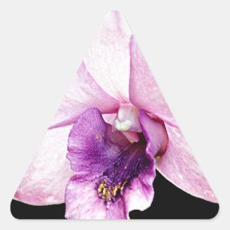 Orchid Triangle Sticker