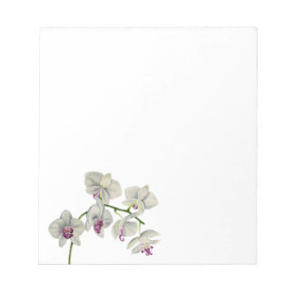 Orchid Watercolor Painting Notepad