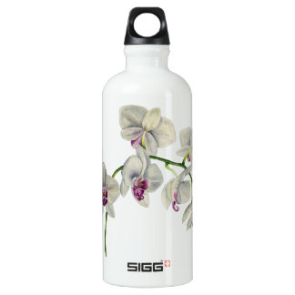Orchid Watercolor Painting Water Bottle
