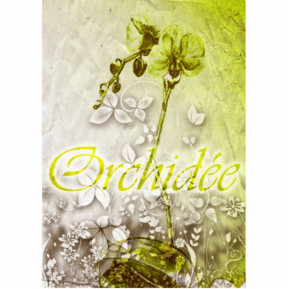 Orchidee Photo Cut Outs