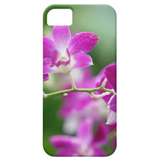 orchids barely there iPhone 5 case