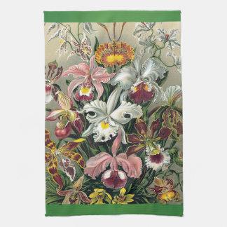 Orchids by Ernst Haeckel Tea Towel