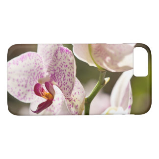 Orchids by Shirley Taylor iPhone 8/7 Case