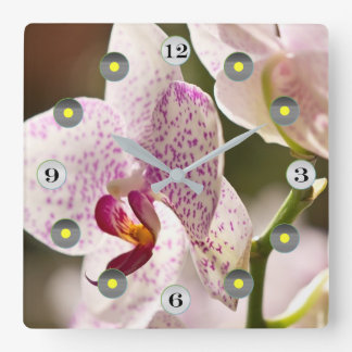 Orchids by Shirley Taylor Square Wall Clock