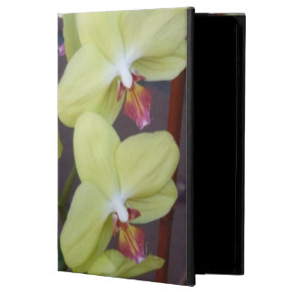 orchids case for iPad air