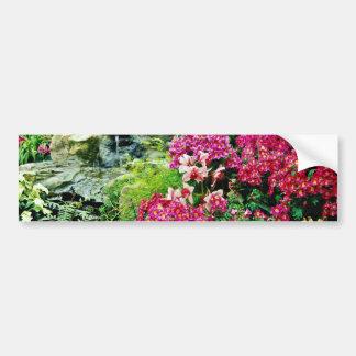 Orchids  flowers bumper sticker