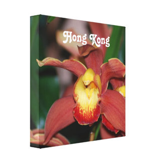 Orchids in Hong Kong Stretched Canvas Print