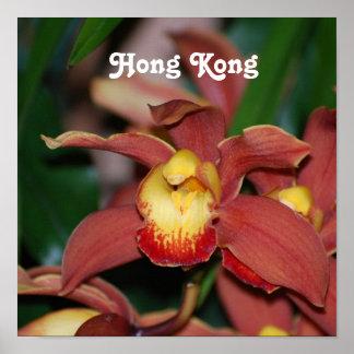 Orchids in Hong Kong Print