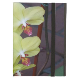 orchids iPad air cover