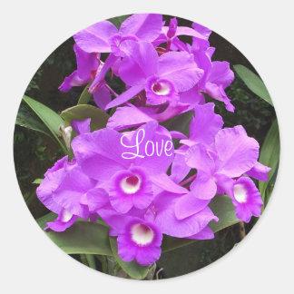 Orchids Love Sticker